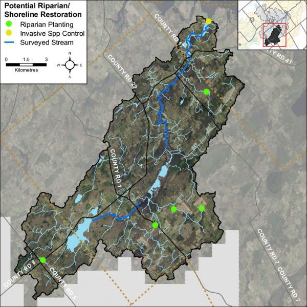 Figure 49 Riparian restoration opportunities along Irish Creek