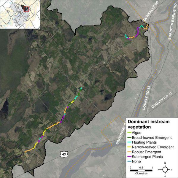 Figure 33 Dominant vegetation type along Rideau Creek