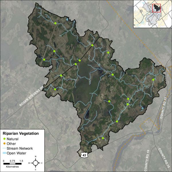 Figure 48 Headwater feature riparian vegetation types in the Rideau Creek catchment