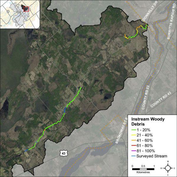 Figure 20 Instream woody debris along Rideau Creek
