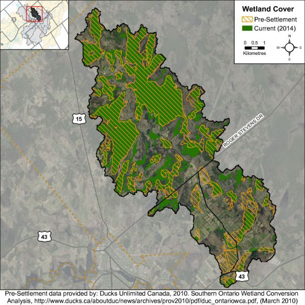 Figure 35 Catchment wetland cover While there has been a reported decrease in wetland cover in the Rosedale Creek catchment from pre-settlement times, the remaining wetland cover in 2014 remains above
