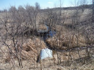 A spring photo of the headwater sample site in the Jock River Barrhaven catchment located on Okeefe Court