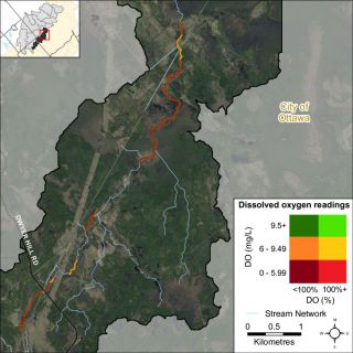 Figure XX A bivariate assessment of dissolved oxygen concentration (mg/L) and saturation (%) in Nichols Creek