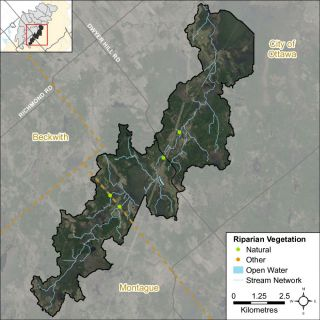 Figure XX Headwater feature riparian vegetation types in the Nichols Creek catchment