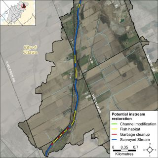Figure XX Instream restoration opportunities along Jock River in the Leamy Creek catchment
