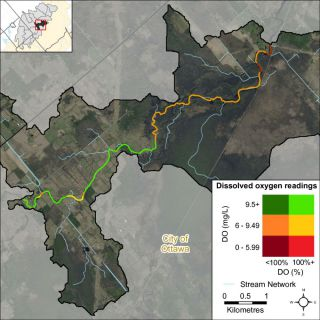 Figure XX A bivariate assessment of dissolved oxygen concentration (mg/L) and saturation (%) in the Jock River Richmond Fen reach
