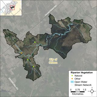 Figure XX Headwater feature riparian vegetation types in the Jock River Richmond Fen catchment