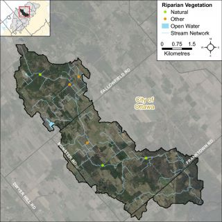 Figure XX Headwater feature riparian vegetation types in the Hobbs Drain catchment