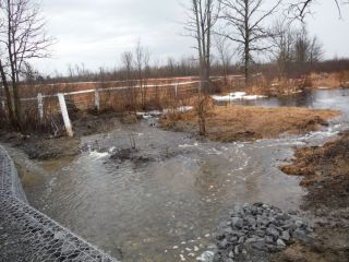A spring photo of the headwater sample site in the Jock River Richmond Fen catchment located on Munster Road