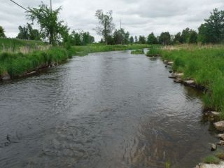 Electrofishing sampling location at Franktown Road
