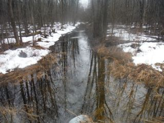 A spring photo of the headwater sample site in the Nichols Creek catchment located on Derry Side Road