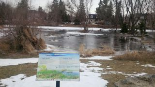 Jock River Wetland Embayment winter condition