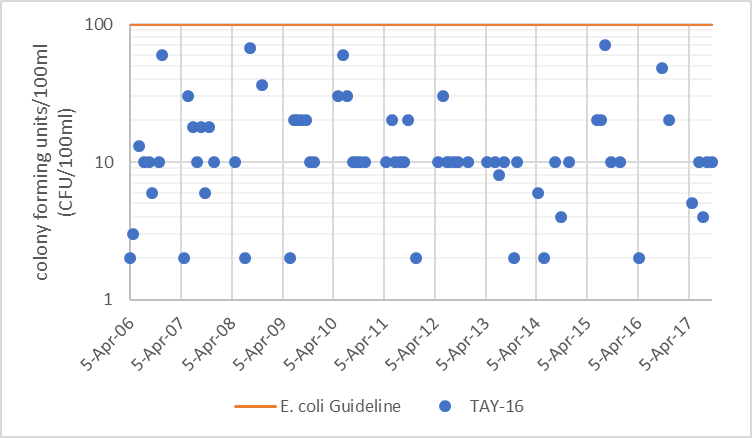 Figure 72  Distribution of E. coli counts at TAY-16 in the Tay River, 2006-2017