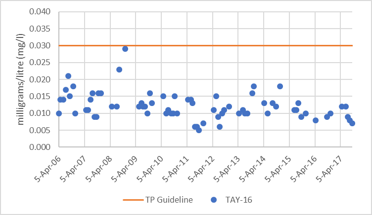Figure 64  Distribution of total phosphorus concentrations at site TAY-16 in the Tay River, 2006-2017.