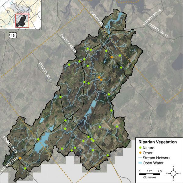 Figure 44 Headwater feature riparian vegetation types in the Irish Creek catchment