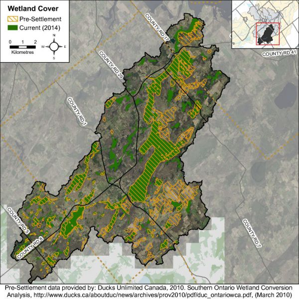 Figure 35 Catchment wetland cover While there has been a reported decrease in wetland cover in the Irish Creek catchment from pre-settlement times, the remaining wetland cover in 2014 remains above th