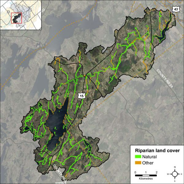 Figure 38 Natural and other riparian land cover in the Otter Lake and Creek catchment