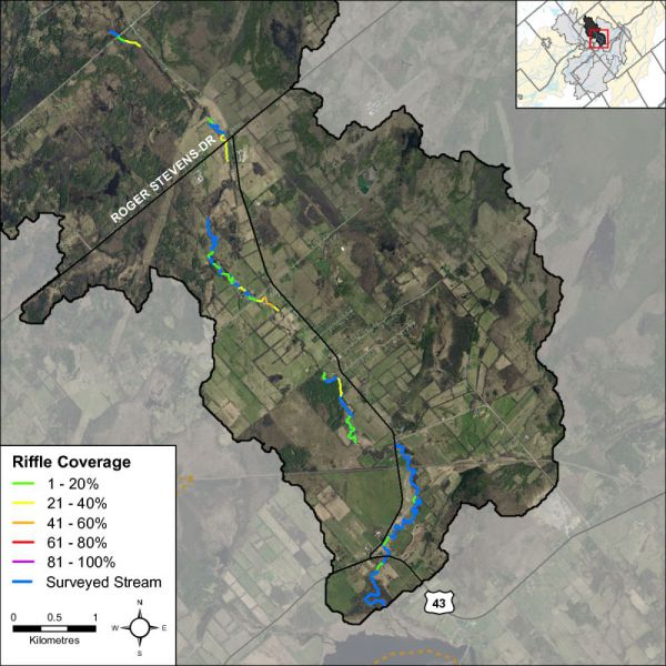 Figure 32 Riffle habitat locations along Rosedale Creek
