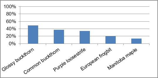 Figure 36 Invasive species frequency by type along Hutton Creek